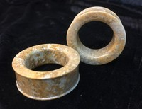Classic Eyelets in Fossilized Coral