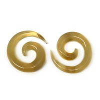 Large Long Spirals in Golden Water Buffalo Horn