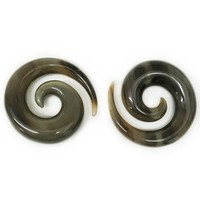 Large Long Spirals in Tortoise Water Buffalo Horn