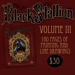 Black Stallion Volume 3