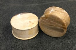 Classic Plugs in Javanese Fossilized Wood - Style 2B